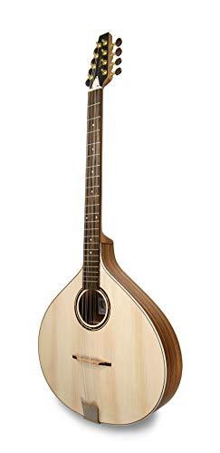APC Instruments PTB310 - Instrumento de cuerdas