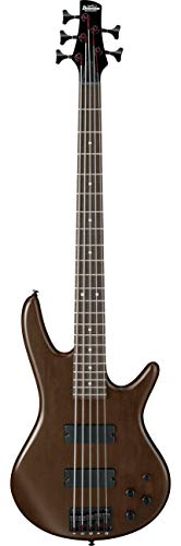 Ibanez gsr205b–WNF E-Bass