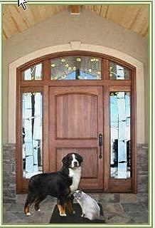 Best pet sensing doorbell Reviews