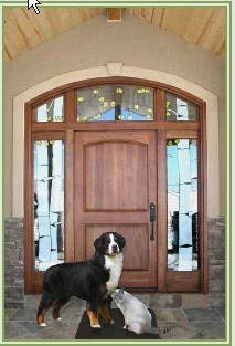 Pet Doorbell Mat   System