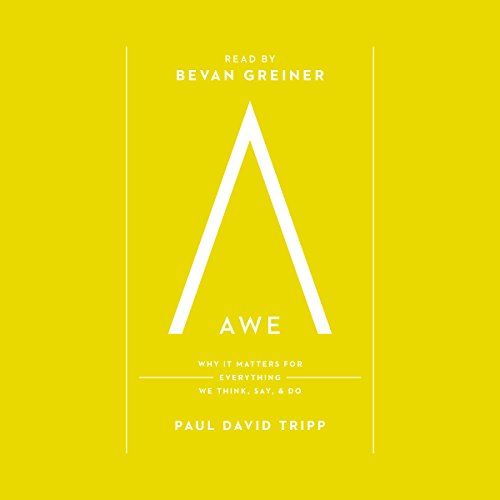 Awe cover art
