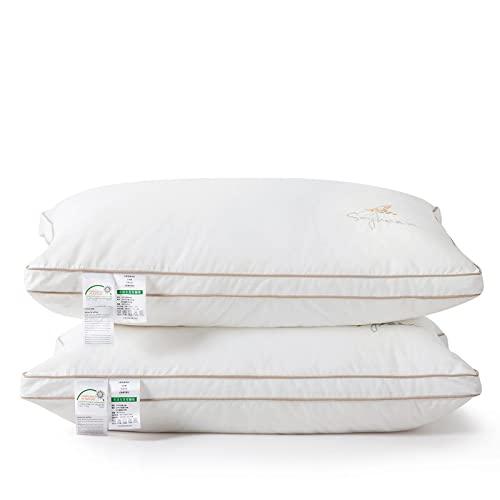 VCXDG (Un Par) La Fibra Puede Proteger La Columna Cervical Y Ayudarlo A Dormir sobre La Almohada. Almohadas De AlgodóN Lavables. Almohadas De Hotel De Cinco Estrellas. Almohada Suave (Blanca)