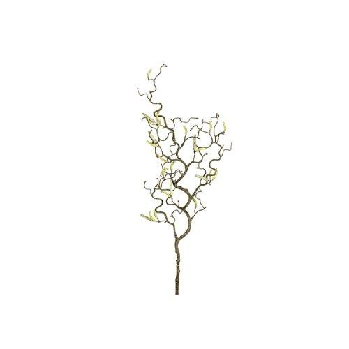 Gasper 104028-00 Korkenzieherast 67cm (1 Stück)