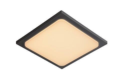 Lucide ORAS - Plafonnier Extérieur - LED - 1x20W 3000K - IP54 - Noir