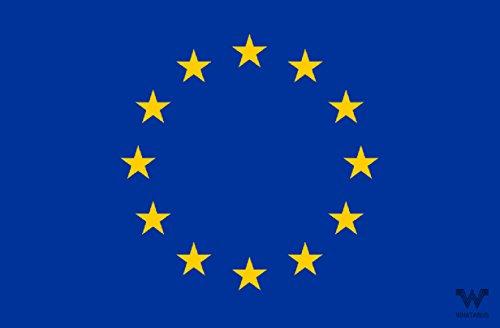 WHATABUS - Adesivo con bandiera dell'Unione europea/UE, 8,5 x 5,5 cm