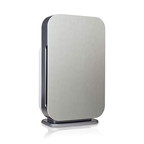 Alen 45i-Heavy-Smoke, Dust, Mold, Odors, Brushed Stainless