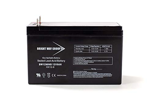 Bright Way Group 12V 9Ah Rechargeable SLA Battery with Nut & Bolt Terminal   BW1290 NB Terminal