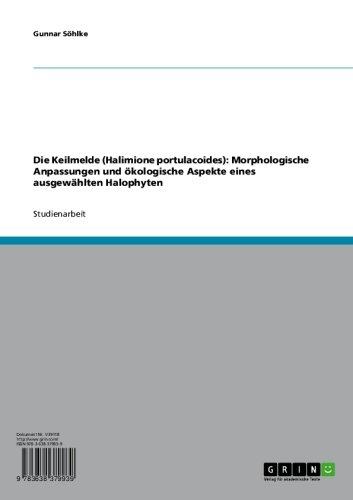 Die Keilmelde (Halimione portulacoides): Morphologische Anpassungen und ökologische Aspekte eines ausgewählten Halophyten