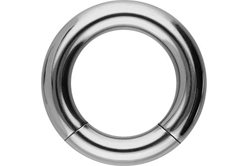 PIERCINGLINE Titan Segmentring | silberfarben | Piercing Ring Septum Helix | Größenauswahl