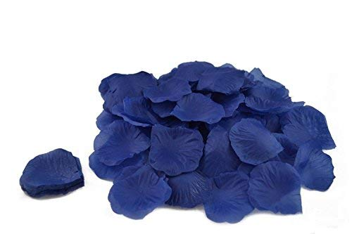 Sanderson tôt tulipes aubergine /& cerise floral traversin coussin couverture