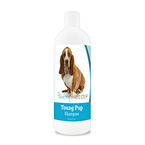 Healthy Breeds Basset Hound Young Puppy Soap-Free, Degerent-Free, Tearless, Baby Powder Scent Shampoo 8oz