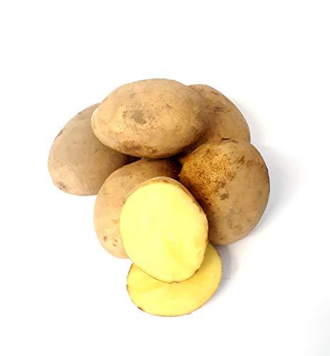 Kartoffel Sunita mehlig deutsche Speisekartoffeln frische Kartoffeln perfekt für Kartoffelsuppe, Püree, Gnocchi, Knödel, Kroketten, Ofenkartoffeln Aufläufe auch zum Grillen geeignet 1-25 KG (8)
