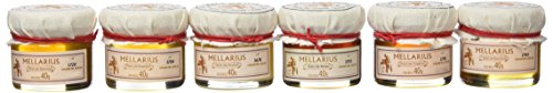 Miel Mellarius packglass 6 variedades monodosis 40 g -Total 240 g