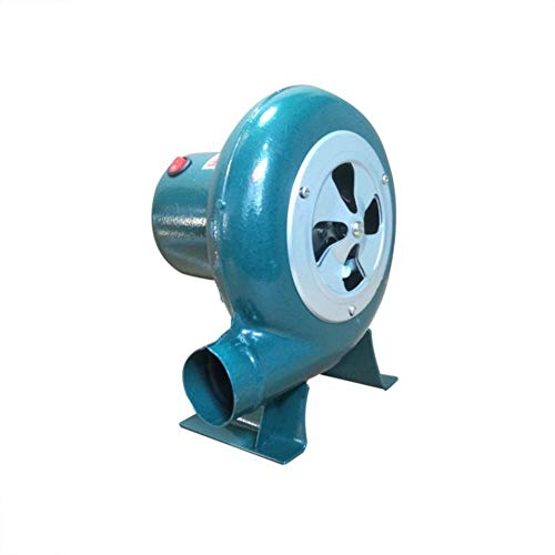 Buy Electric Combustion Air Blower, Barbecue Fan Combustion Stove Barbecue Lighter Hair Dryer, 220V,...