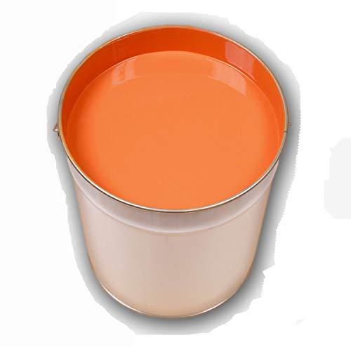 10 Liter Orange Bodenfarbe Betonfarbe Garagenfarbe Industrieboden PU Farbe