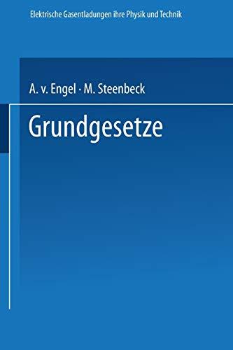 Elektrische Gasentladungen Grundgesetze: Ihre Physik und Technik (German Edition)