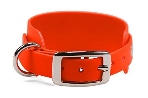 LENNIE BioThane Windhundhalsband, 50 mm breit, 25 mm Dornschnalle, Größe 34-40 cm, Neon-Orange, Aufdruck möglich