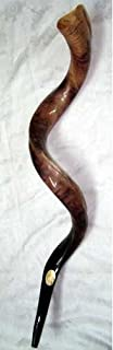 Kudu shofar Kudu yemenite Horn shofar Kosher todos Pulido aproximadamente 28