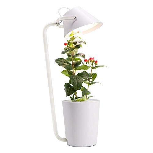 Soilless Growing Smart Herb Garden Kit Led Grow Light Multifunction Desk Lamp Garden Plants Flower Hydroponics Grow Tent Box