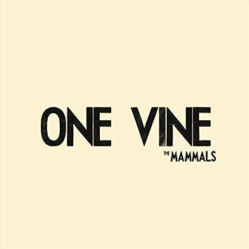 One Vine