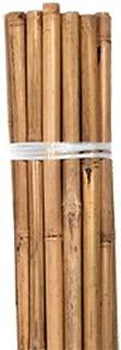 Bamboo Stakes, Natural, 2 foot, Bag of 25