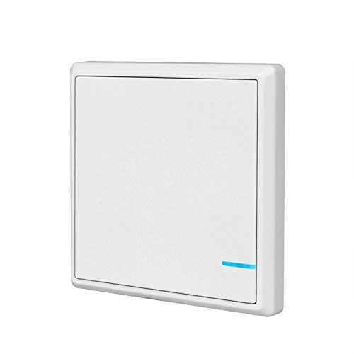 TSSS Funkschalter Lichtschalter Schalttafel mit LED Anzeige Licht (Enthält keinen Empfänger) (1 Kanal)