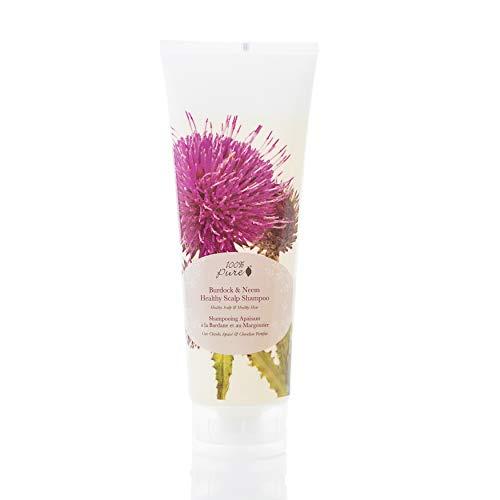 100% PURE Burdock & Neem Healthy Scalp Shampoo (8 Fl Oz), Sulfate-free Shampoo for Dry, Itchy, Flaky Scalp, Dandruff Shampoo, Made with Coconut Oil, Vitamin E