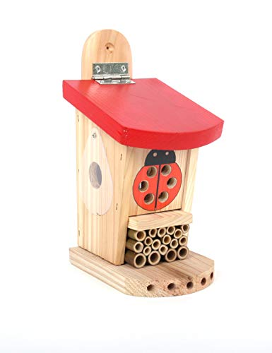 Wildlife World Live Ladybird Lodge Lebende Marienkäferhütte, rot/braun
