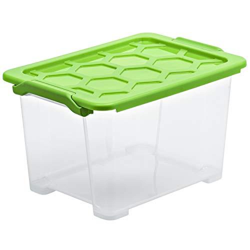 Rotho Evo Safe Keeping Aufbewahrungsbox 15l mit Deckel, Kunststoff (lebensmittelecht) BPA-frei, transparent/grün, 15l (39,3 x 28,3 x 23,0 cm)