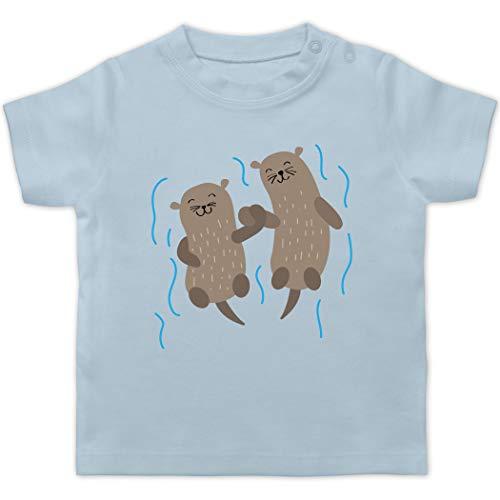 Tiermotive Baby - Süße Otter - 3/6 Monate - Babyblau - T-Shirt - BZ02 - Baby T-Shirt Kurzarm