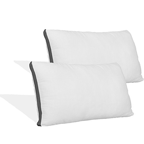 Coop Home Goods - Pillow Protector - Waterproof and Hypoallergenic - Protect Your Pillow Against Fluids/Spills/Mites/Bed Bugs - Oeko-TEX Certified Lulltra Fabric - Standard (2 Pack)