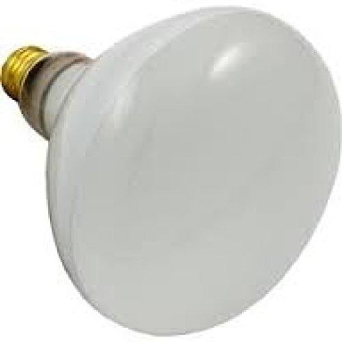 Hayward SPX0504Z7, SPX504-Z-7, SPX504-Z7, SP0503, SP0504, 500 Watt 120 Volt, R40 Light Pool/Spa Flood Lamp Bulb