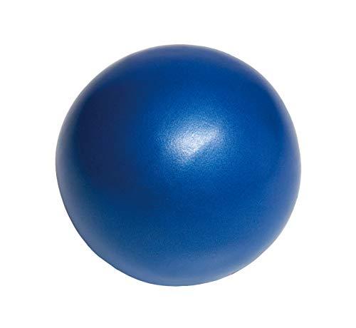 キャプテンスタッグ(CAPTAIN STAG) エクササイズ フィットネス 体幹トレーニング ピラティス ヨガ ボール Φ20cm ブルー Vit Fit UR-864