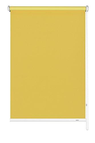 GARDINIA Seitenzug-Rollo zum Abdunkeln, Decken-, Wand- oder Nischenmontage, Lichtundurchlässig, Alle Montage-Teile inklusive, Gelb, 122 x 180 cm (BxH)
