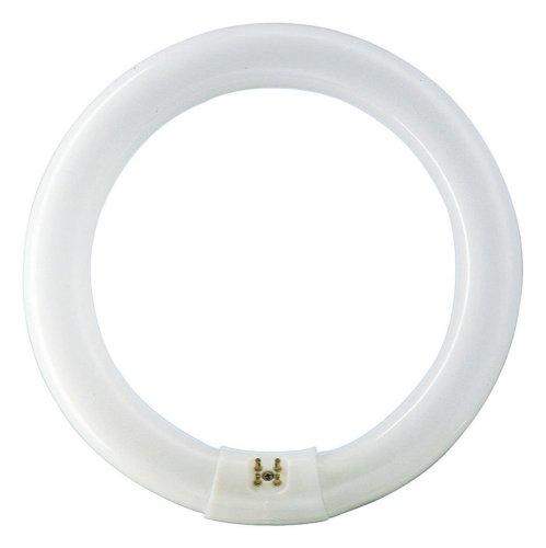 Philips Master TL-E 32 W G10Q - Lámpara circular ( 32W 4000K / 840), Blanco frío