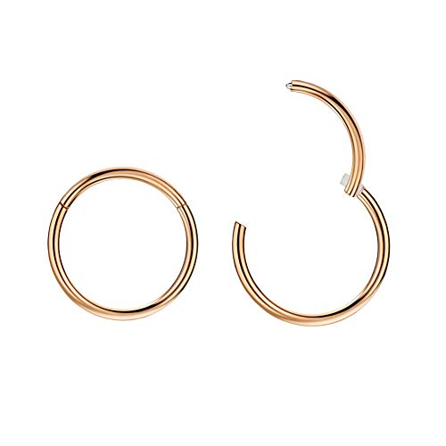 2pcs 8mm Septum Ring Nose Rings Hoop Rose Gold Nose Ring 20 Gauge Nose Hoop Helix Earring Daith Tragus Earrings Septum Clicker Lip Rings 20g Cartilage Earring Nose Piercing Jewelry Surgical Steel