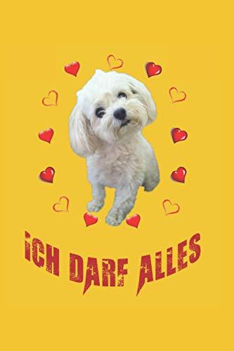 Ich darf alles: Malteser Hund, Bester Freund des Menschen. Ein tolles Notizbuch A5 mit 108 karierte Seiten. Ein Motiv für Hundebesitzer, ... Hundeliebhaber, Hunde Papas und Hunde Mamas.