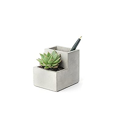 Kikkerland Concrete Desktop Planter, Small (PL02-S)