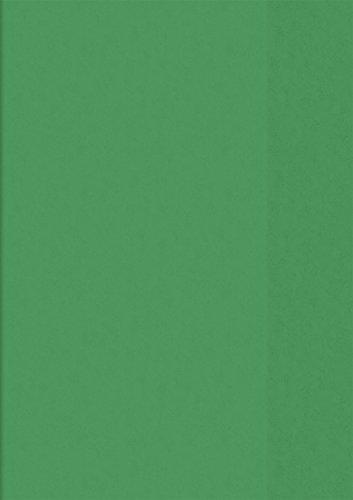 Baier & Schneider - Copertina per libri e quaderni, formato A4, 21,6 x 30,8 cm, colore: Verde