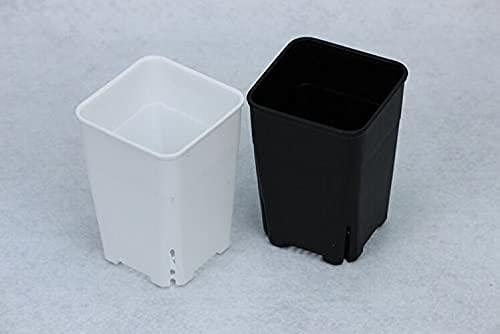 NICETOW vasi da Fiori Quadrati di plastica Spessa Vientiane vasi Piante di Carne vasi da Fiori piantare vasi da Fiori Verdi Orchidee (Colore: 10 Pezzi Calibro 10 cm, Dimensioni Foglio: Colore Nero)