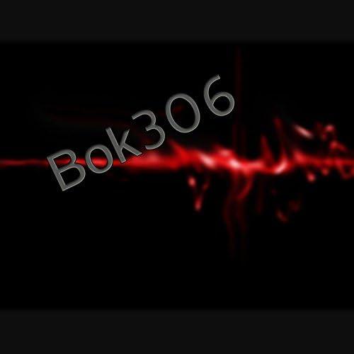 Bok306