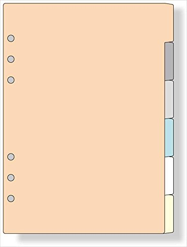 (まとめ買い) レイメイ藤井 ダヴィンチ リフィル A5 カラーインデックス DAR506 【×5】