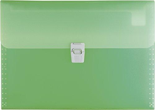 Brunnen 102024050 Fächermappe FACT! (aus transluzenter PP-Folie, A4, 10-teilig) grün