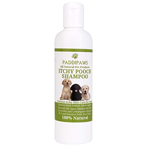 PADDIPAWS 100% Natural Itchy Dog shampoo with Quassia - Rapid Relief from Itching and Discomfort - Concentrated - Gentle and Safe Natural Ingredients - Non Toxic and Paraben Free -250ml