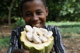 ショコラマダガスカル『ダークチョコレート85%』