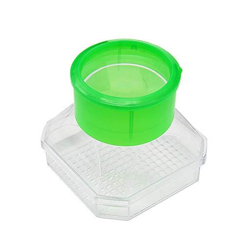 Bug Observation Vergroting Insect Observation Box, Volledig Transparant Kunststof, 3X Vergrootglas, Geschikt voor School Outdoor Exploration