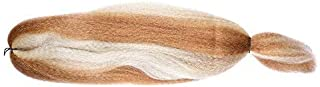 FASHION LADY Kanekalon Jumbo Braiding Hair Synthetic Kanekalon Braiding Hair For Twist Braiding Jumbo Braids Hair Extensions Hair Box Braids Hair(48Inch 57g/PC, 27/613)