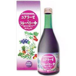 ミヤトウ野草研究所 野草野菜果物発酵原液 ユアラーゼ・ブルーベリー+ 500ml×2本セット