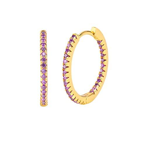 YFZCLYZAXET Pendientes Mujer S925 Plata Marea Círculo Temperamento Pendientes Femeninos Pendientes Multicolor con Incrustaciones De Circón Elegante Pendiente Joyería-Púrpura