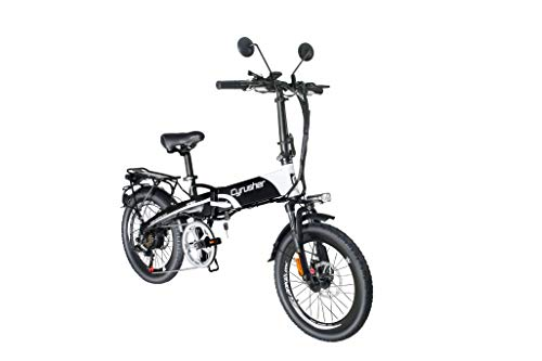 Bicicleta eléctrica Plegable Extrbici XF500 250W 48V 10A Li-Battery 20 Pulgadas Ajuste de neumáticos Ordenador Inteligente Frenos de Disco Doble con Rejilla Trasera(Blanco)